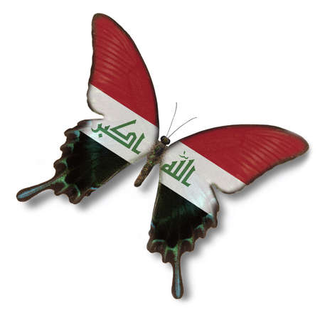 arab flags: Iraq flag on butterfly isolated on white