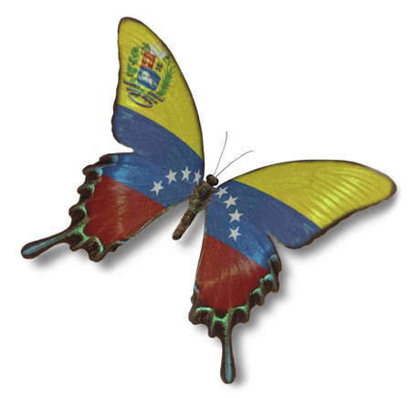 Venezuela flag on butterfly isolated on white photo