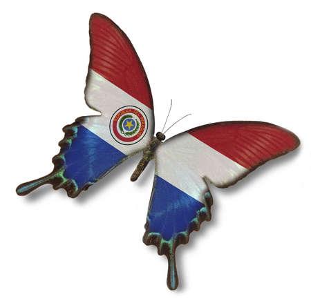 bandera de paraguay: La bandera de Paraguay en la mariposa aislado oh blanca Foto de archivo