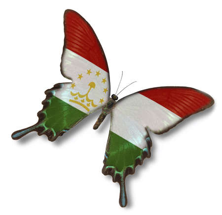 tajikistan: Tajikistan flag on butterfly isolated on white Stock Photo