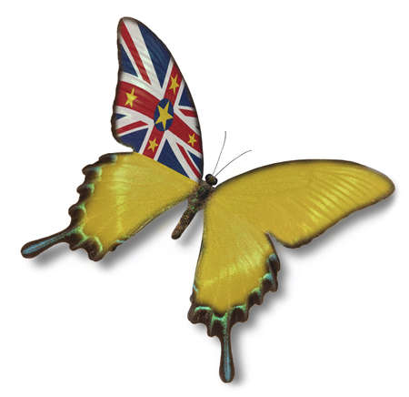 niue: Niue flag on butterfly  isolated on white