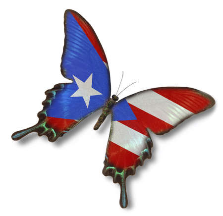 Puerto Rico flag on butterfly isolated on white photo