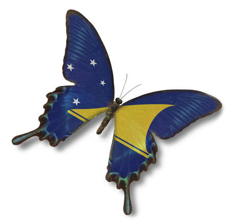 tokelau: Tokelau flag on butterfly isolated on white