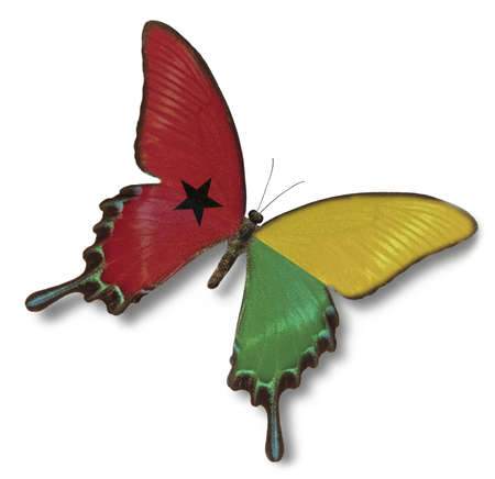 guinea bissau: Guinea Bissau flag on butterfly isolated on white