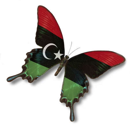 Libya flag on butterfly isolated in white photo