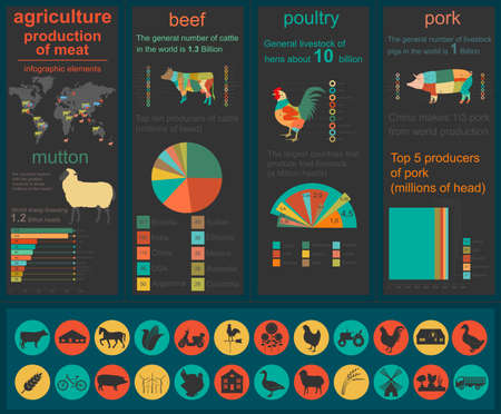 husbandry: Agriculture, animal husbandry infographics, Vector illustrationstry info graphics. Vector illustration