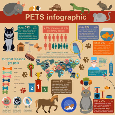 Domestic pets infographic elements, helthcare, vet. Vector illustration