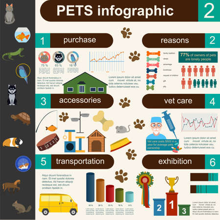 helthcare: Domestic pets infographic elements, helthcare, vet. Vector illustration