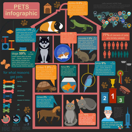 huskies: Domestic pets infographic elements, helthcare, vet. Vector illustration