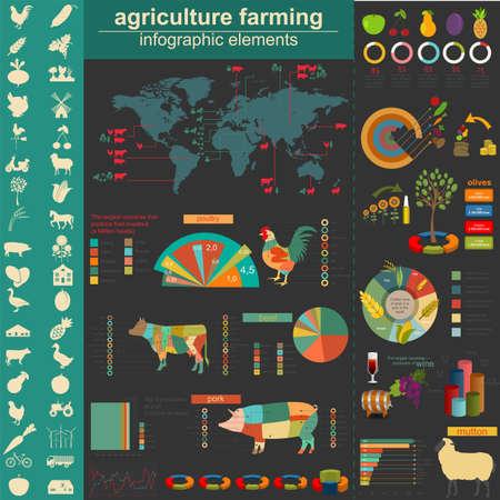 aves de corral: Infografía Agricultura. Ilustración vectorial