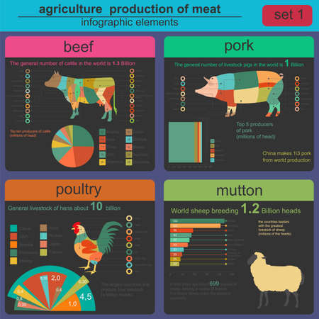 animal husbandry: Agriculture, animal husbandry infographics, Vector illustrationstry info graphics. Vector illustration