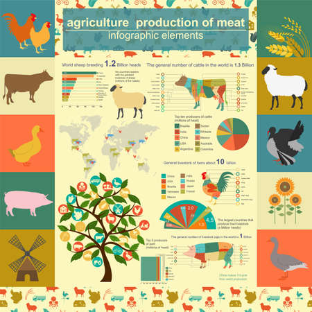Agriculture, animal husbandry infographics, Vector illustrationstry info graphics. Vector illustration