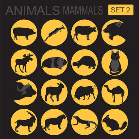 mammals: Animals mammals icon set. Vector flat style. Vector illustration