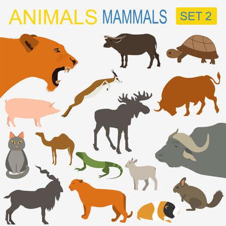 Animals mammals icon set. Vector flat style. Vector illustration Vector