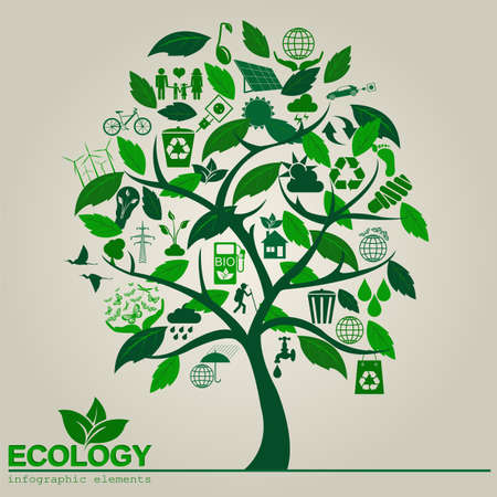 diagrama de arbol: Medio ambiente, ecolog�a elementos infogr�ficos. Los riesgos ambientales, ecosistema. Plantilla. Ilustraci�n vectorial Vectores