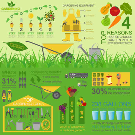 Garten arbeiten Infografik-Elemente. Arbeitswerkzeuge gesetzt. Vektor-Illustration Standard-Bild - 36596036