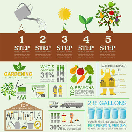 green vegetables: Garden work infographic elements. Working tools set. Vector illustration