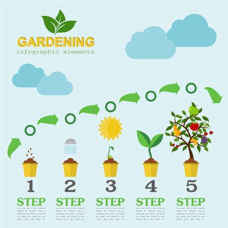 watering garden: Garden work infographic elements. Working tools set. Vector illustration