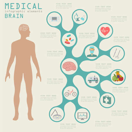 brain: Medical and healthcare infographic, Brain  infographics. Vector illustration Illustration