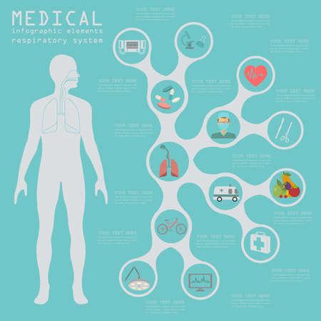 human anatomy: Infograf�a m�dica y la atenci�n sanitaria, la infograf�a del sistema respiratorio. Ilustraci�n vectorial