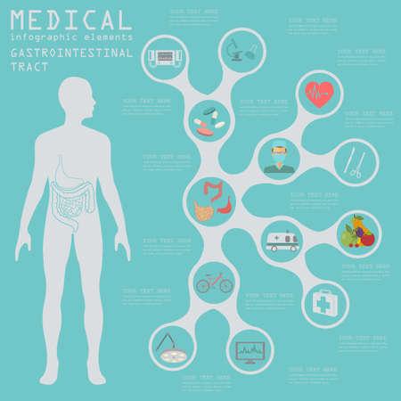 ulceras: Infograf�a m�dica y la atenci�n sanitaria, la infograf�a del tracto gastrointestinal. Ilustraci�n vectorial