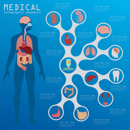 human body: Medical and healthcare infographic, elements for creating infographics. Vector illustration