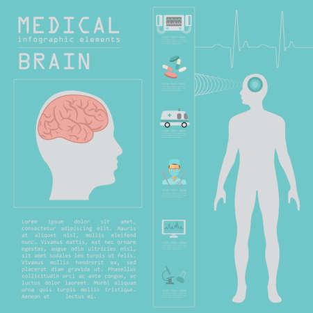 corpo umano: Medici e sanitari infografica, infografica cervello. Illustrazione vettoriale