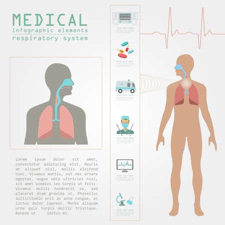 sistema: Infograf�a m�dica y la atenci�n sanitaria, la infograf�a del sistema respiratorio. Ilustraci�n vectorial