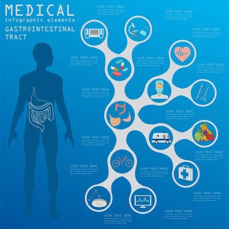 gastrointestinal: Infograf�a m�dica y la atenci�n sanitaria, la infograf�a del tracto gastrointestinal. Ilustraci�n vectorial