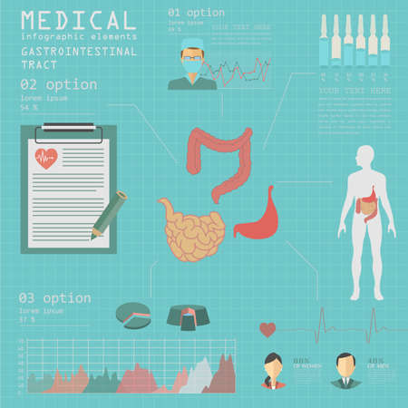 gastrointestinal tract: Medical and healthcare infographic, gastrointestinal tract infographics. Vector illustration
