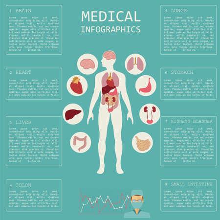 Medizin und Gesundheitswesen Infografik Elemente für die Erstellung von Infografiken. Vektor-Illustration Vektorgrafik