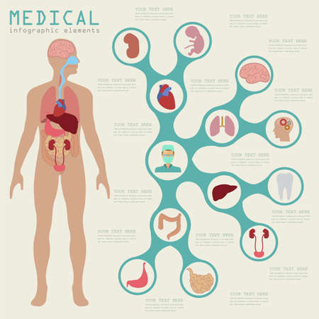 corpo umano: Medici e sanitari infografica, elementi per la creazione di infografica. Illustrazione vettoriale