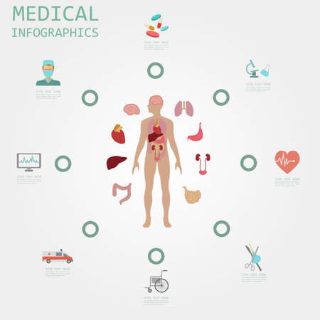 higado humano: Infograf�a m�dica y cuidado de la salud, los elementos para la creaci�n de infograf�as. Ilustraci�n vectorial