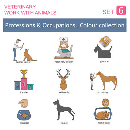 groomer: Professions and occupations coloured icon set. Veterinary, work with animals. Flat linear design. Vector illustration Illustration
