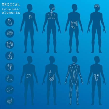 医療・ ヘルスケア インフォ グラフィック、インフォ グラフィックを作成するための要素。ベクトル図  イラスト・ベクター素材