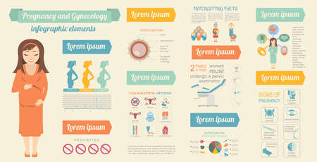 gynecology: Gynecology and pregnancy infographic template. Motherhood elements. Constructor for creating your own design, infographics. Vector illustration