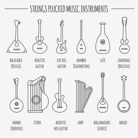 plucked: Musical instruments graphic template. Strings plucked. Vector illustration Illustration