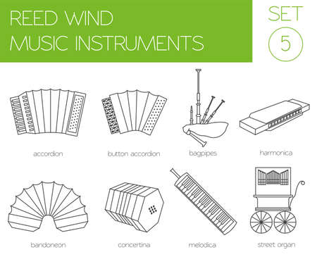concertina: Musical instruments graphic template. Reed wind. Vector illustration