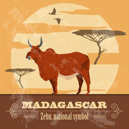 national symbol: Madagascar. National symbol zebu. Retro styled image. Vector illustration