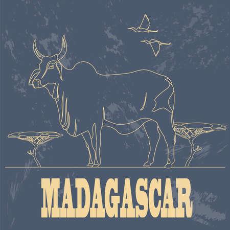 Madagascar. National symbol zebu. Retro styled image. Vector illustration