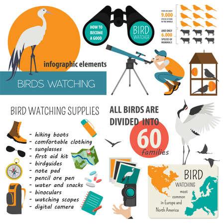 birdwatcher: Bird watching infographic template. Vector illustration