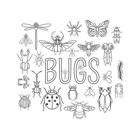 mayfly insects icon flat style 24 pieces in set outline version vector