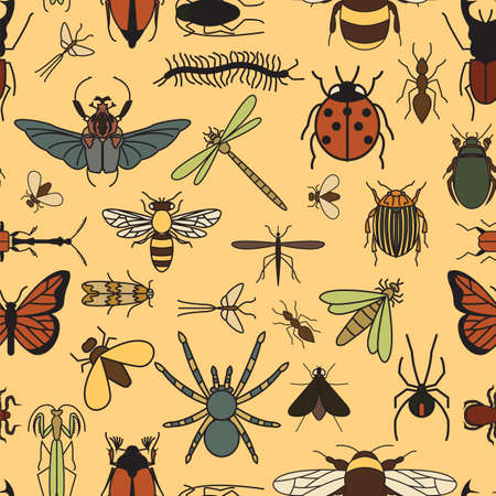gnat: Insects seamless pattern. 24 pieces in set.  Vector illustration Illustration