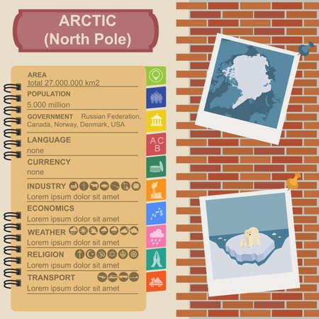 floe: Arctic (North Pole) infographics, statistical data, sights. Vector illustration Illustration