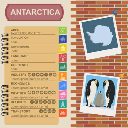 south pole: Antarctica (South Pole) infographics, statistical data, sights. Vector illustration Illustration