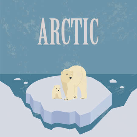 north pole: Arctic (North Pole). Retro styled image. Vector illustration