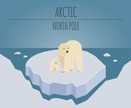 Arctic (North Pole) graphic template. Vector illustration Illustration