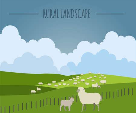 new zealand landscape: Rural landscape graphic template. Vector illustration