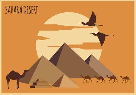 sahara desert: Sahara desert graphic template. Vector illustration