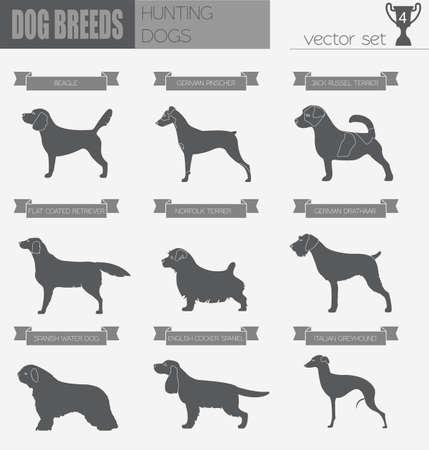 breeds: Dog breeds. Hunting dog set icon. Flat style. Vector illustration